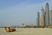 Dubai - 8