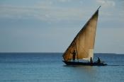 Balıkçı Teknesi (Fisher Boat) - 4